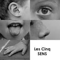 Tellement des stimulations pour nos 5 sens