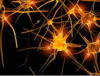 Une connexion neuronale
