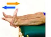 Flexion et extension du pied