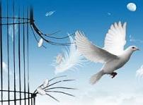 Voler vers la liberté
