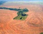 Dans ce pays 90% de la terre est cultivée et consacrée à la monoculture du soja OGM