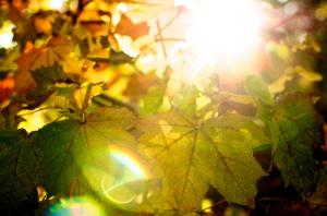La lumière éblouissante
