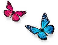 Transformation dans la vie