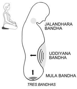 mula_bandha