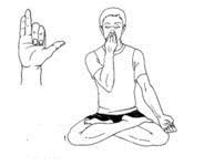 Respiration Nasale Alternee Anuloma Viloma Holistic Attitude