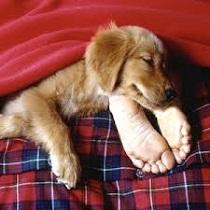 Favoriser une bonne nuit de sommeil